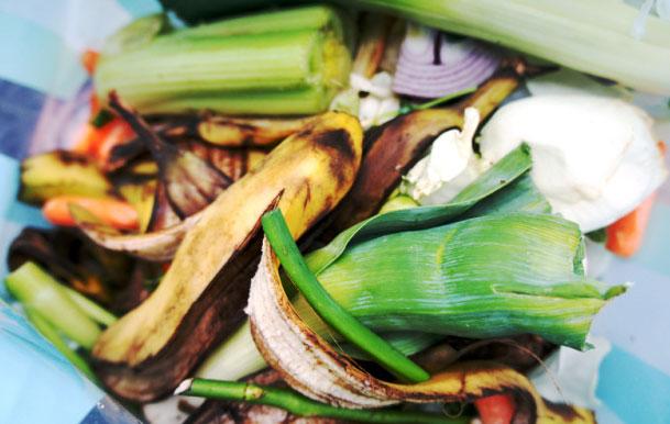 compost-image